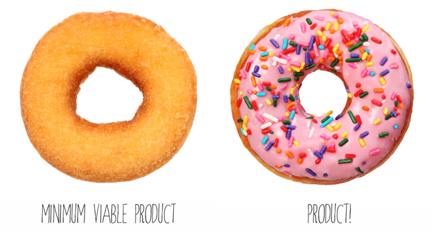 Building a Minimum Viable Product (MVP)